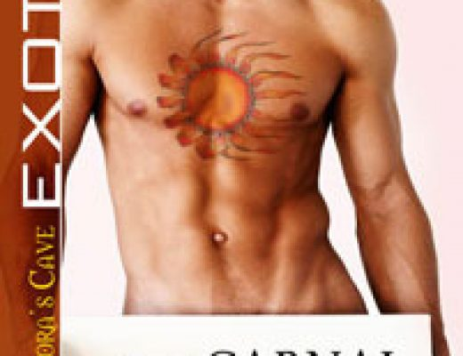 Review: Carnal Ecstasy by Lissa Matthews