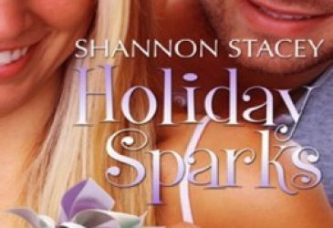 Review: Holiday Sparks by Shannon Stacey