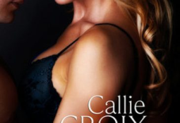 Afternoon Delight: Touch Me by Callie Croix
