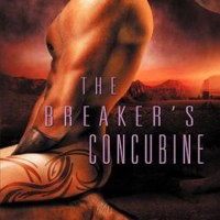 The Breaker's Concubine by Ann Mayburn