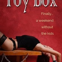 Toy Box by Delphine Dryden