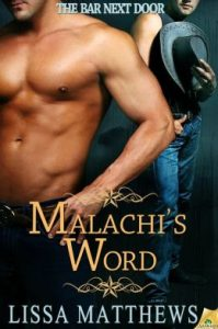 Review Malachi's Word by Lissa Matthews