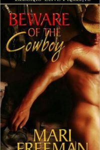 Review Beware of the Cowboy by Mair Freeman