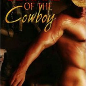 Afternoon Delight: Beware of the Cowboy by Mari Freeman