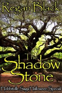 Review The Shadow Stone by Regan Black