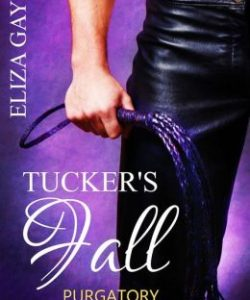 Review Tucker's Fall by Eliza Gayle