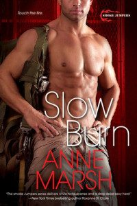 Review Slow Burn by Anne Marsh