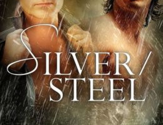 Review: Silver/Steel by Belinda McBride