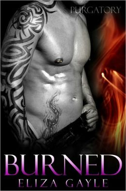 Afternoon Delight Review: Burned by Eliza Gayle