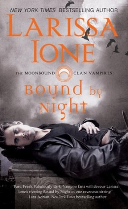 Review Bound by the Night by Larissa Ione