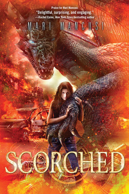 Young Delight Revew: Scorched by Mari Mancusi