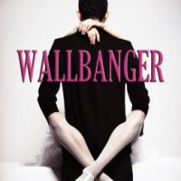 Review Wallbanger by Anne Clayton