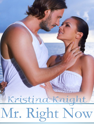 Spotlight: Mr. Right Now by Kristina Knight