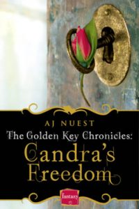 Review Candra's Freedom by AJ Nuest