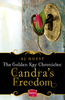 Afternoon Delight: Candra's Freedom by A.J. Nuest