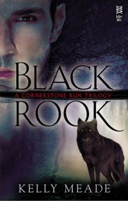 Review: Black Rook by Kelly Meade