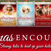 Christmas Encounters – Steamy tales to heat up your holiday! #Giveaway #XmasEncounters