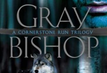 Review: Gray Bishop by Kelly Meade