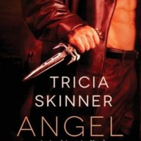 Review: Angel Kin by Tricia Skinner
