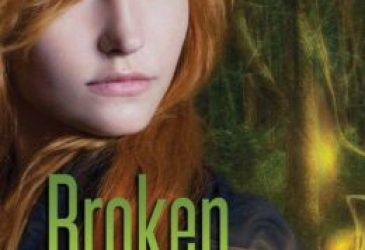 Broken Skies by Theresa Kay #YAReview