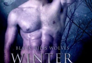 Winter Secrets by M. Limoges #Review #Giveaway