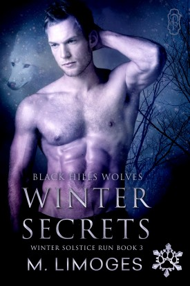 Winter Secrets by M. Limoges