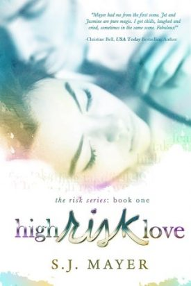 High Risk Love by S.J. Mayer