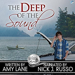 The Deep of the Sound by Amy Lane