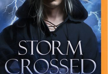 Review: Storm Crossed by Dani Harper