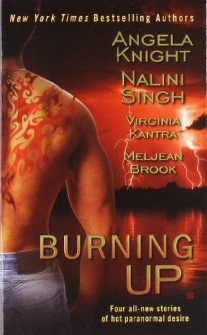 Burning Up by Nalini Singh, Angela Knight, Virginia Kantra, Meljean Brook