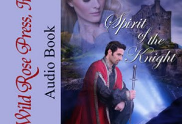 Review: Spirit of the Knight by Debbie Peterson
