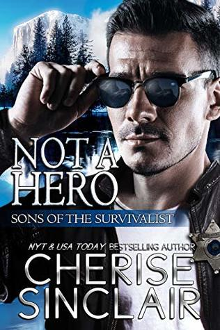 Not a Hero by Cherise Sinclair