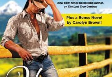 Review: Home At Chestnut Creek by Laura Drake
