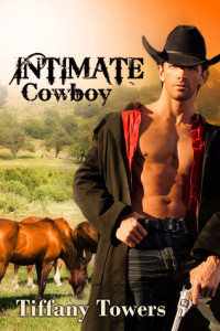 Review Intimate Cowboy by Tiffany Towers