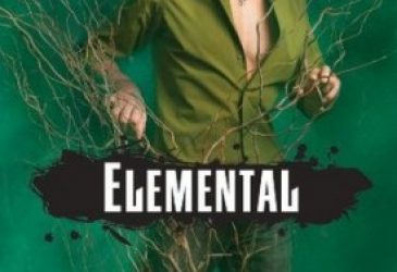 Young Delight Review: Elemental by Brigid Kemmerer