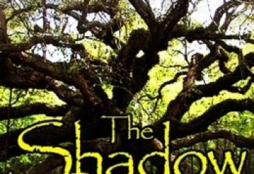 Young Delight Review: The Shadow Stone: Halloween Special by Regan Black