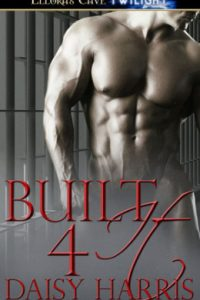 Review Built 4 It by Daisy Harris