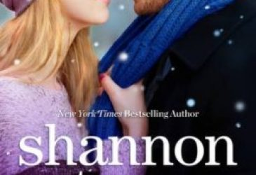 Afternoon Delight: Snowbound with the CEO by Shannon Stacey