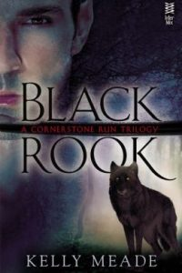 Review Black Rook by Kelly Meade