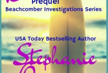The Beachcombers: Prequel by Stephanie Queen #TGPUL