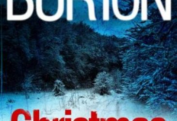 Afternoon Delight Review: Christmas Past by Mary Burton