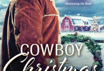 Review: Cowboy Christmas Homecoming by June Faver