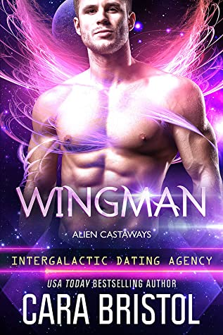 Review: Wingman by Cara Bristol