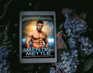 Men of Mettle Collection by Cara Bristol