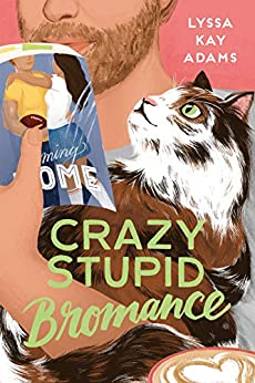 Review: Crazy Stupid Bromance by Lyssa Kay Adams